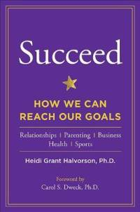 Succeed - how we can reach our goals - резюме, краткое содержание